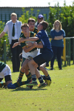 Rugby_o15A_15